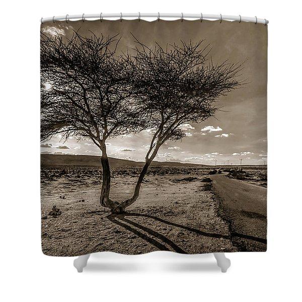 Desert Landmarks  Shower Curtain