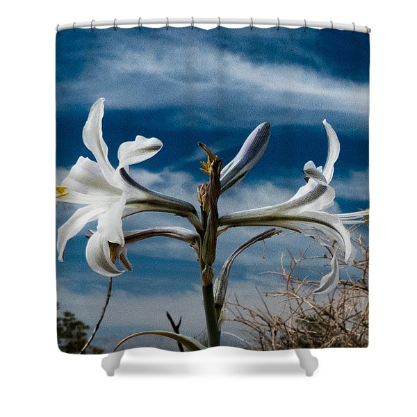 Desert Lilly Close Up Shower Curtain