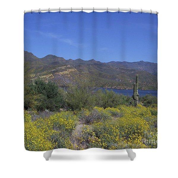 Desert Oasis Shower Curtain