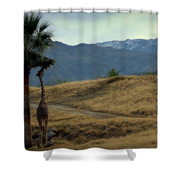 Desert Palm Giraffe 001 Shower Curtain