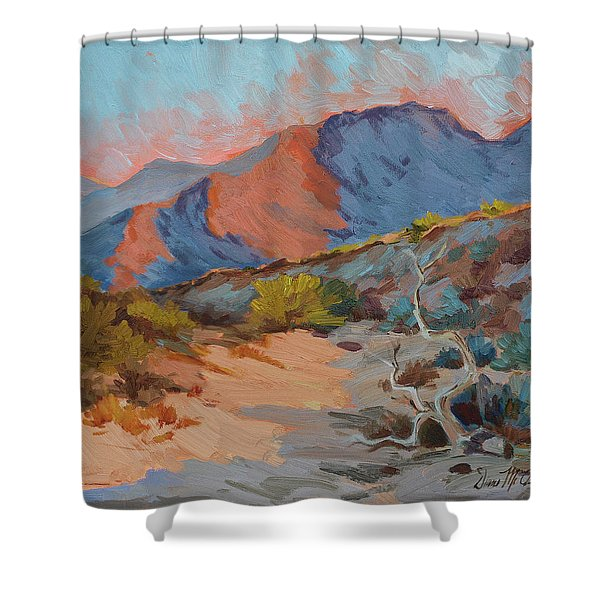 Desert Shadows Shower Curtain