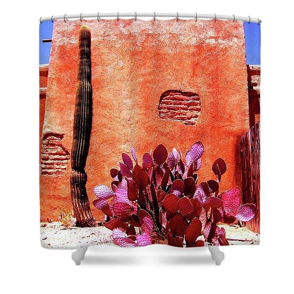 Desert Solace Shower Curtain