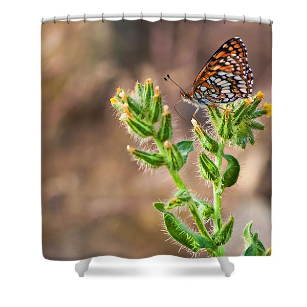 Desert Spring Life Shower Curtain