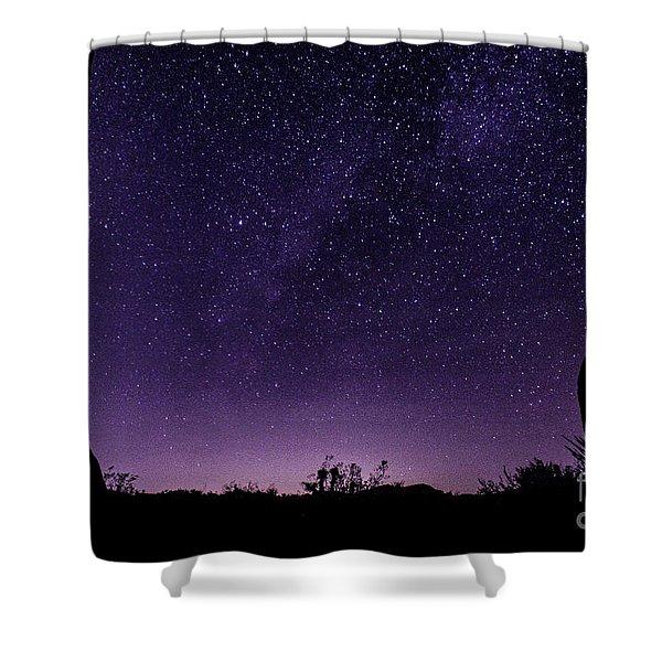Desert Starscape Shower Curtain