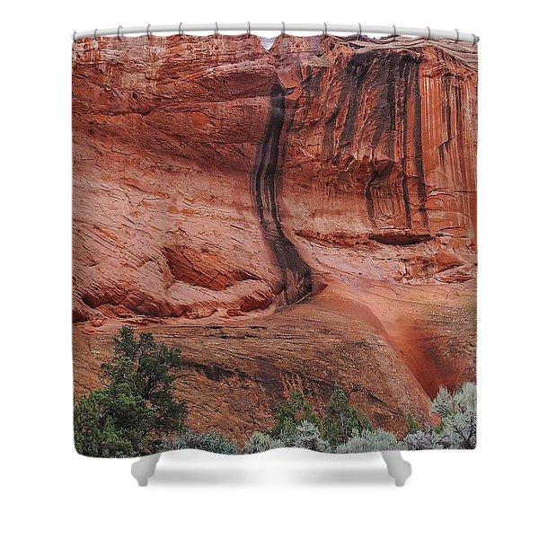 Desert Varnish Along Burr Trail Shower Curtain