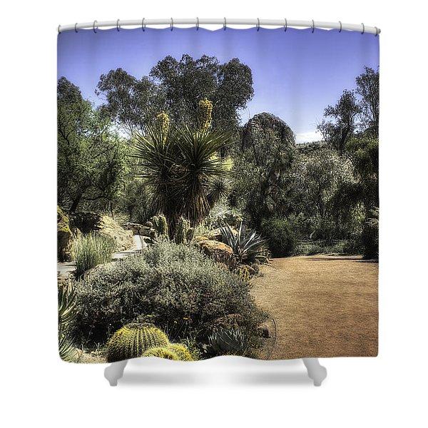 Desert Walkway Shower Curtain