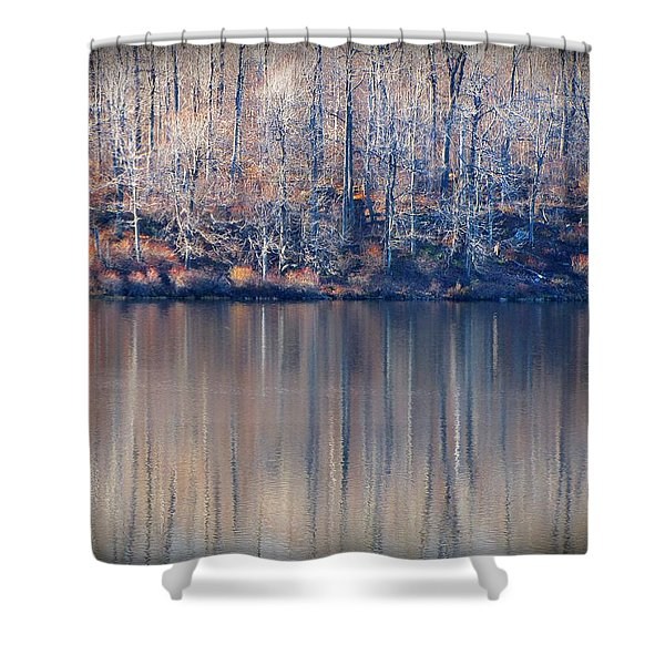 Desolate Splendor Shower Curtain