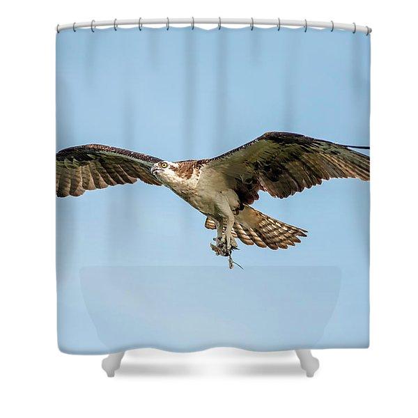 Destination Shower Curtain