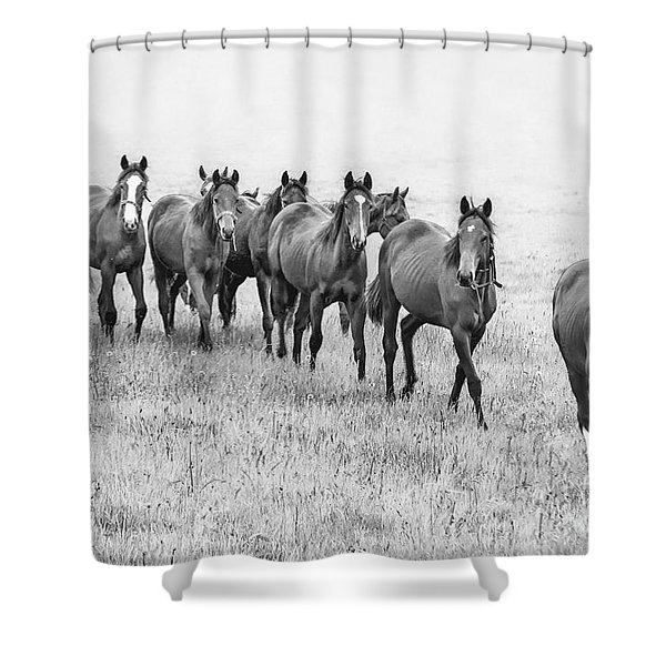 Destiny Of Freedom Shower Curtain