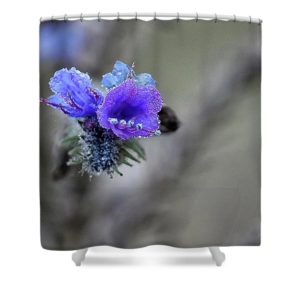 Dew Drops Shower Curtain