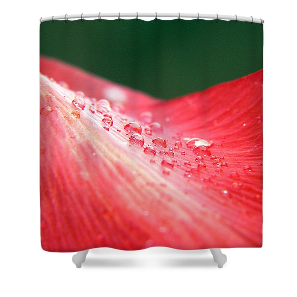 Dew Drops On A Wave Of Red Shower Curtain