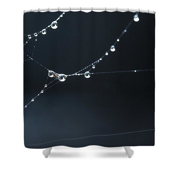 Dew On Cobweb 001 Shower Curtain