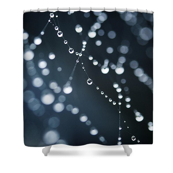 Dewdrops On Cobweb 003 Shower Curtain