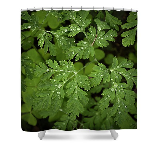 Dewey Leaves Shower Curtain