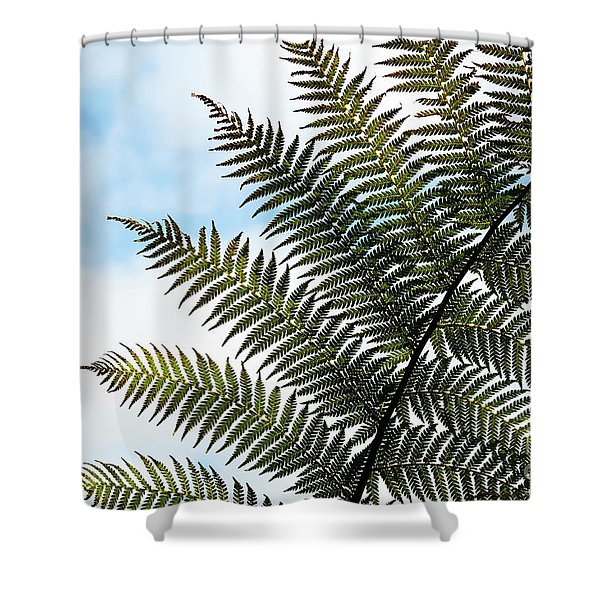 Dicksonia Frond Shower Curtain