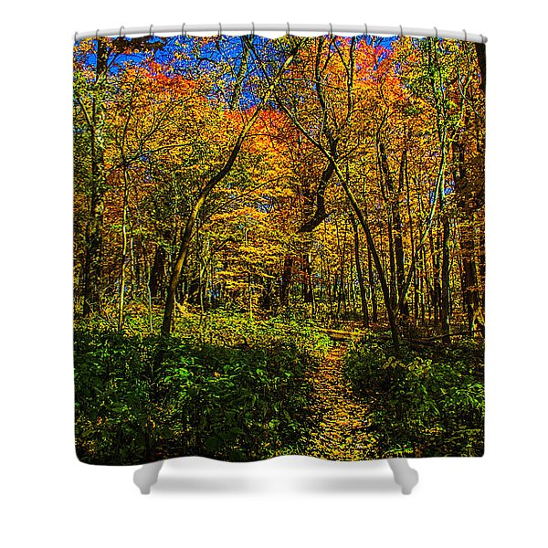 Did You Bring The Breadcrumbs? Shower Curtain