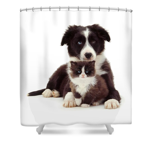 Different Strokes - Same Love Shower Curtain