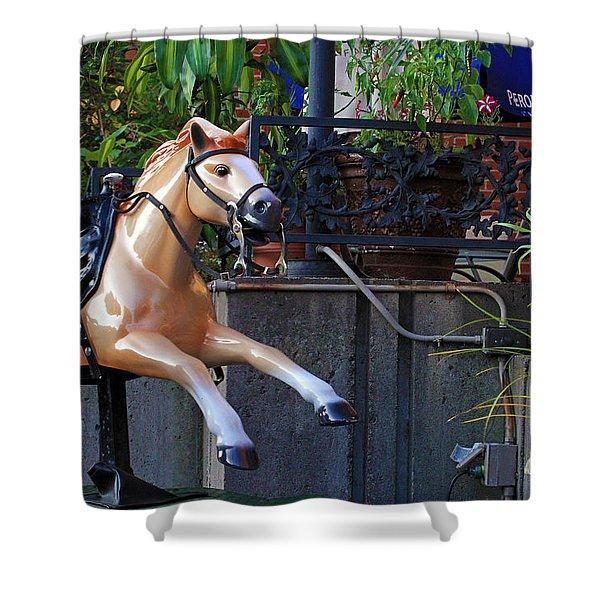 Dime Pony Shower Curtain
