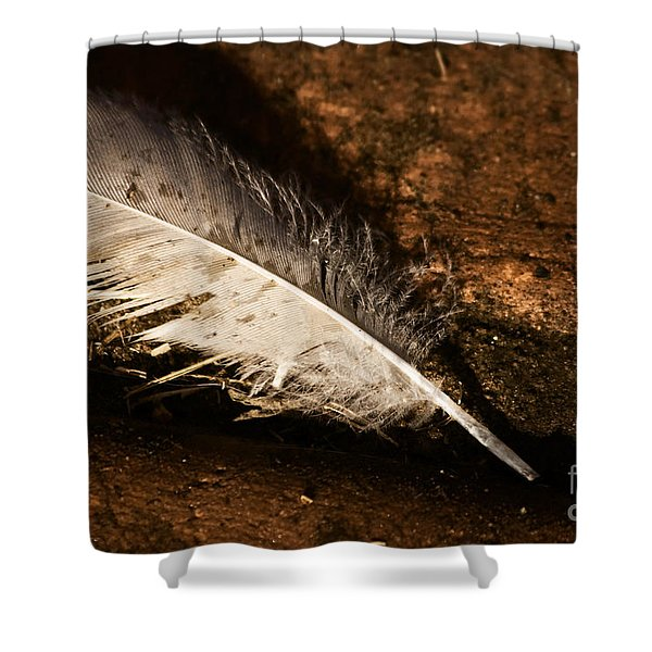 Discarded Feather Shower Curtain