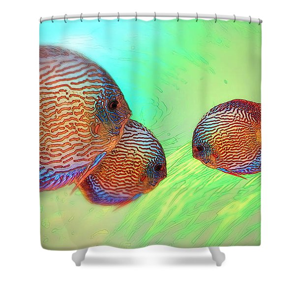Discus In Eel Grass Shower Curtain