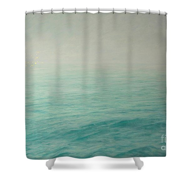 Distant Breath Of A Wing Shower Curtain