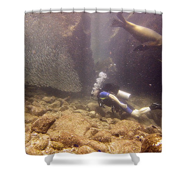 Diver And Sea Lion Shower Curtain