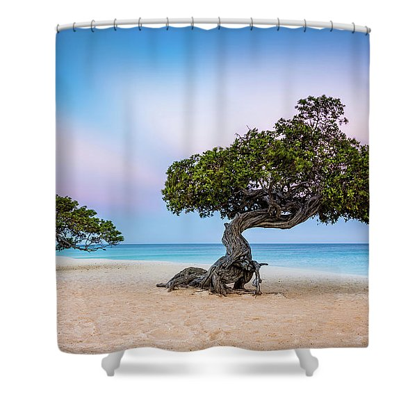 Divi-divi Divi-divi Shower Curtain