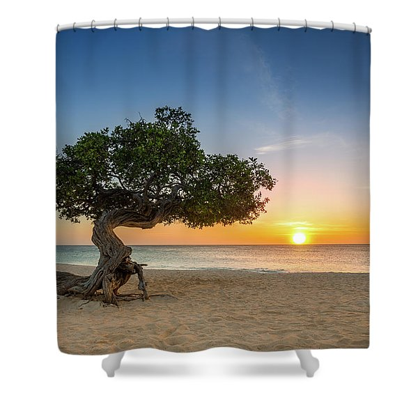 Divi Divi Shower Curtain