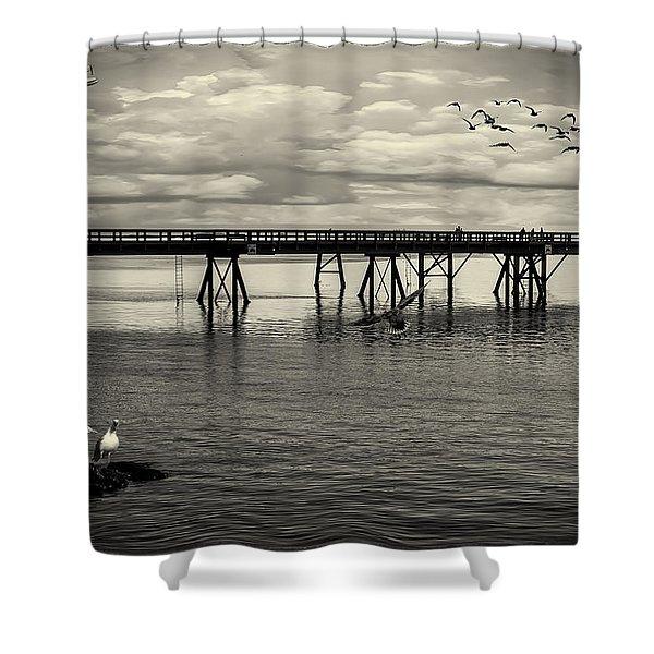 Dock On The Sea Shower Curtain