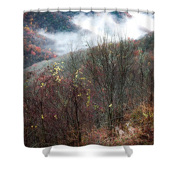 Doe On Autumn Ridge Shower Curtain