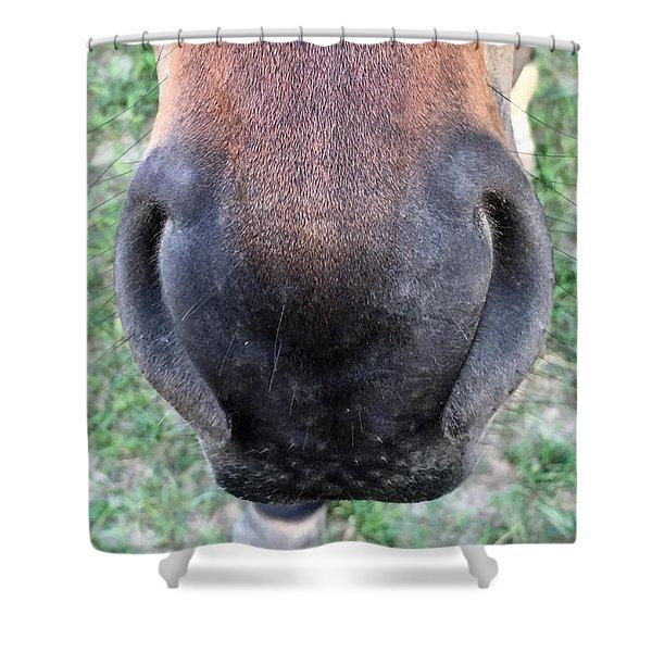 Big Nose  Shower Curtain