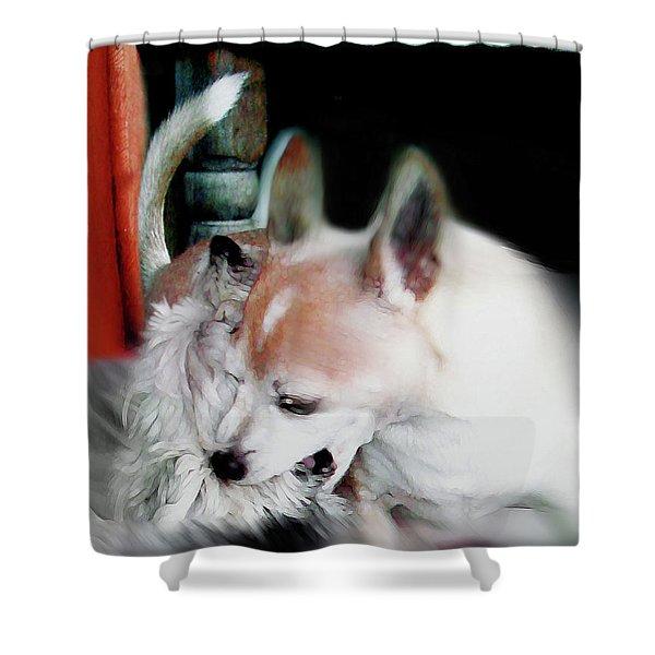 Dog Love Art 3 Shower Curtain