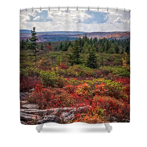 Dolly Sods Wilderness In Autumn 4273 Shower Curtain