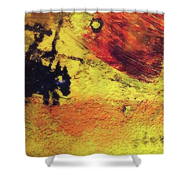 Don Quixote Man Of La Mancha Shower Curtain