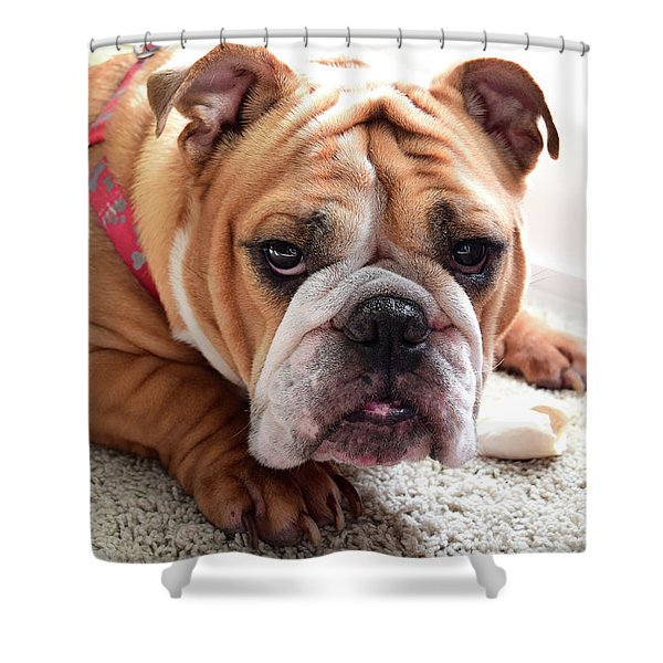 Don't Touch My Bone Shower Curtain