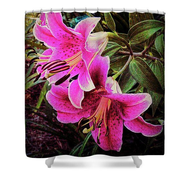 Double Beauty Shower Curtain