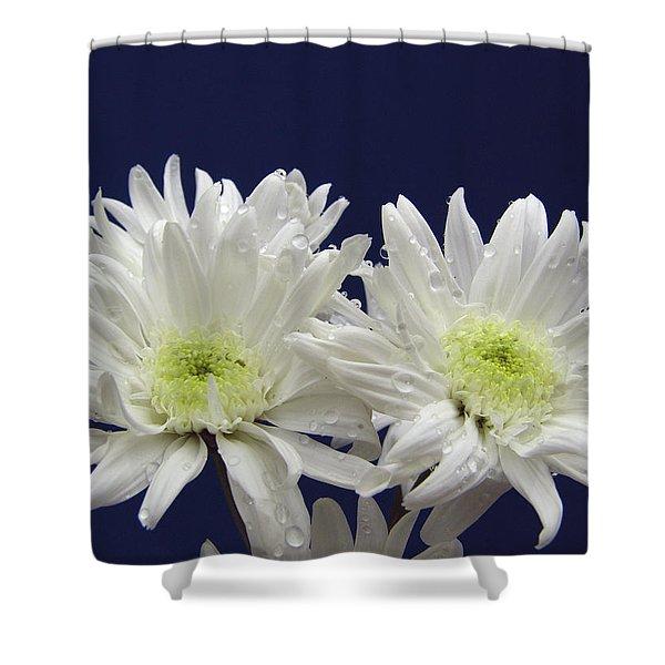 Double Dahlia Shower Curtain