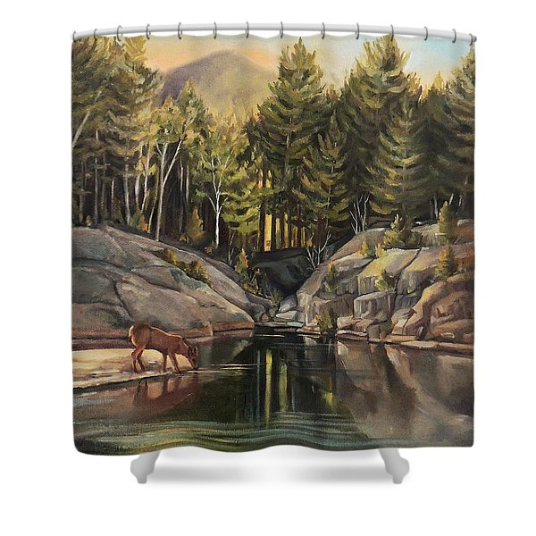 Down By The Pemigewasset River Shower Curtain