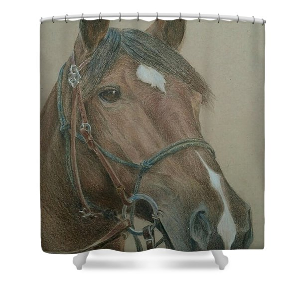 Dozer Shower Curtain