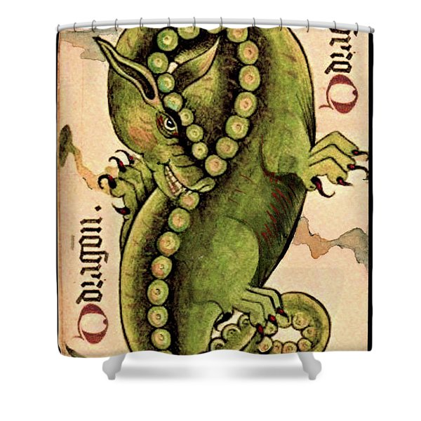 Dragon Dragon Shower Curtain