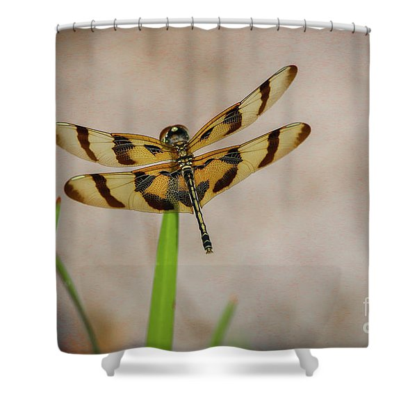 Shower Curtain featuring the photograph Dragonfly On Grass by Tom Claud
