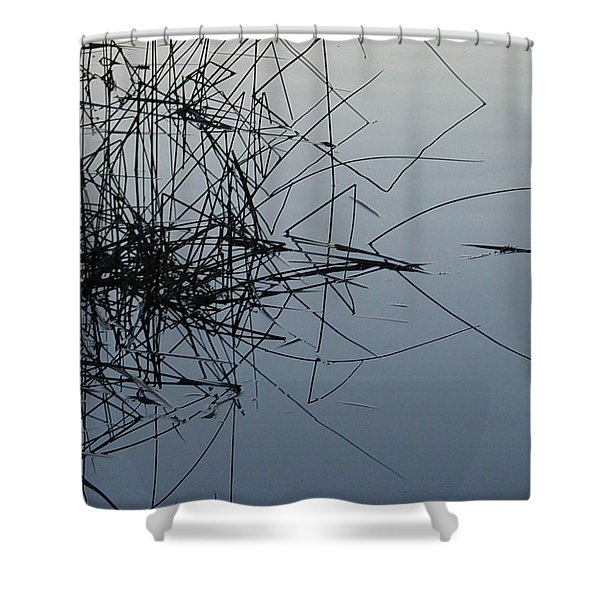 Dragonfly Reflections Shower Curtain