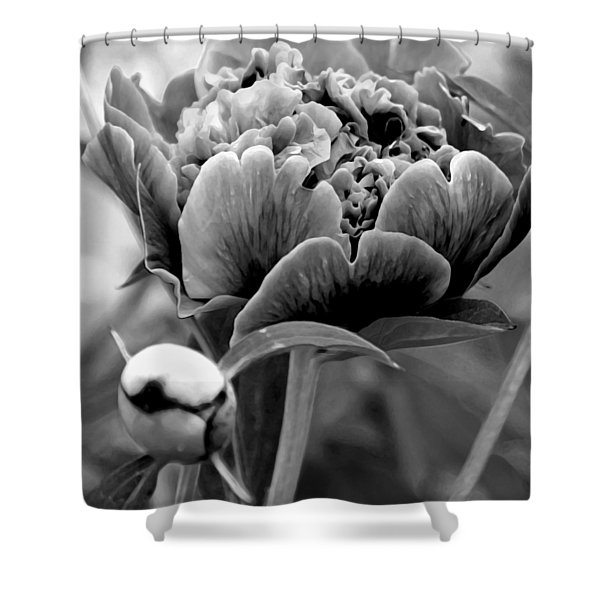 Drama In The Garden Shower Curtain