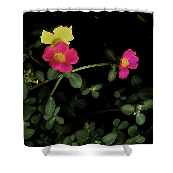 Dramatic Colorful Flowers Shower Curtain