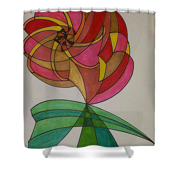 Dream 14  Shower Curtain