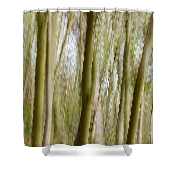 Dream Forest 2 Shower Curtain