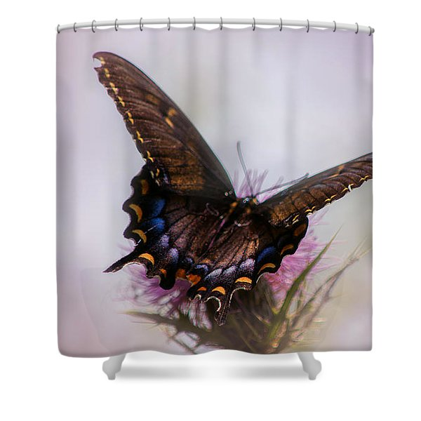 Dream Of A Butterfly Shower Curtain