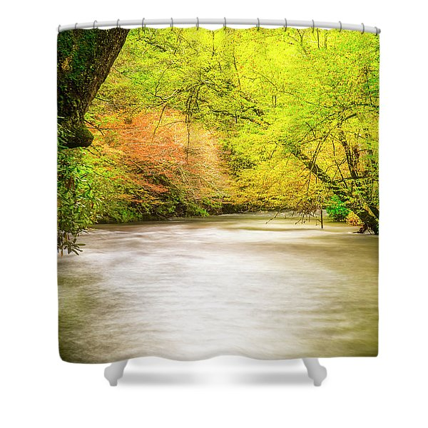 Dreamy Days Shower Curtain