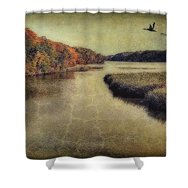 Dreary Autumn Shower Curtain
