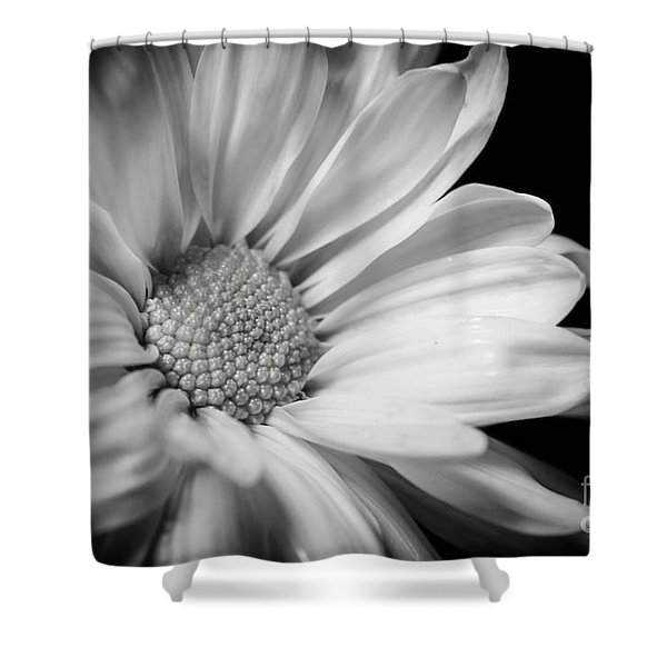 Dressed In Black And White Shower Curtain